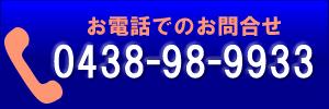 0438989933